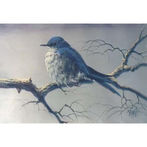 8807 BLUEBIRD