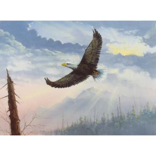 8848 FLYING EAGLE