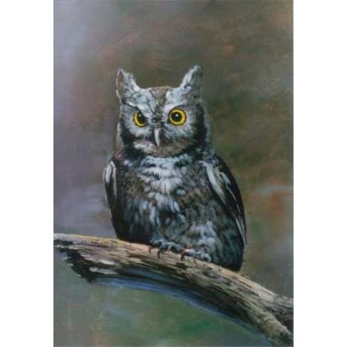 8869 THE OWL