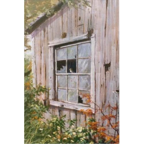 8874 BROKEN WINDOW