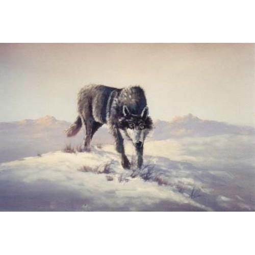 8931 Wolf