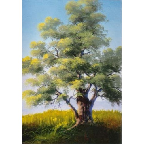 8933 TREE TECHNIQUES